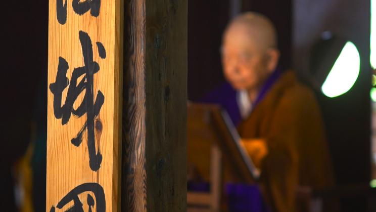 O-Jukai Impression jetzt auf DVD erhältlich – Bestellungen hier möglich
